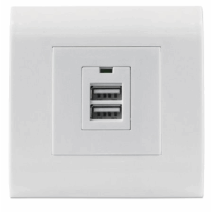 2-Port USB-A Wall Outlet with Faceplate, Two Charging Ports, 5 V / 2.1 A Output, 80 x 80 European Faceplate