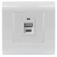 2-Port USB-A & USB-C Wall Outlet with Faceplate, Two USB Charging Ports (Type-A and Type-C), 5 V / 2.1 A Output, 80 x 80 European Faceplate