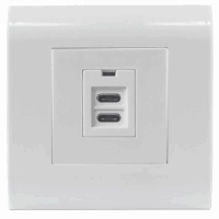 2-Port USB-C Wall Outlet with Faceplate, Two Charging Ports, 5 V / 2.1 A Output, 80 x 80 European Faceplate