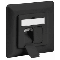 CAT6 Wall Plate Anthracite