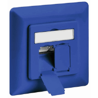 CAT6 Wall Plate Blue