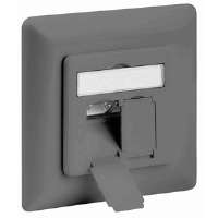 CAT6 Wall Plate Gray