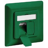 CAT6 Wall Plate Green