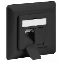 CAT6a Wall Plate Anthracite