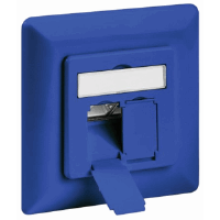 CAT6a Wall Plate Blue