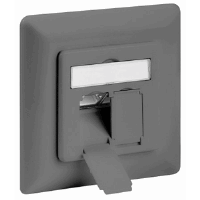 CAT6a Wall Plate Gray