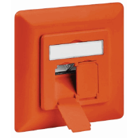 CAT6a Wall Plate Orange